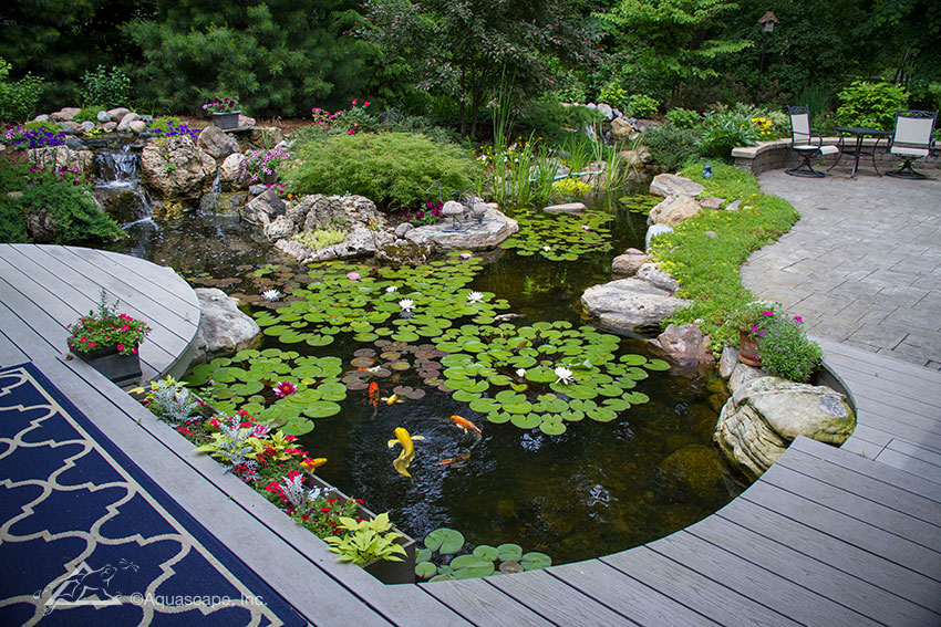 Pond Construction Services - Balanced Ecosystem Ponds