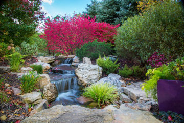 Waterfall / Pondless Waterfalls
