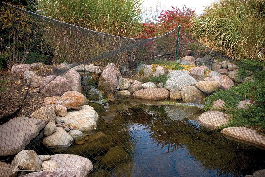 Shutdown your pond for the winter for Design of water harvesting pond