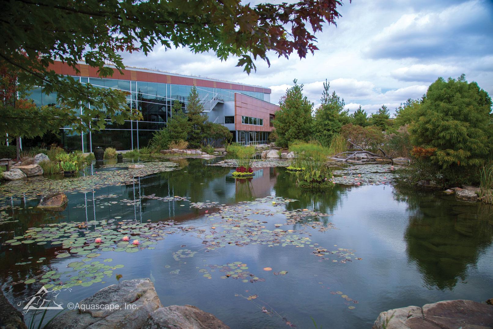 Signature Pond - Aquascape Construction