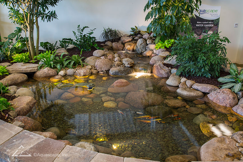 View examples of beautiful backyard ponds in our Water Gardening Store